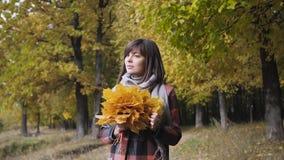 Ramo de las hojas amarillas Muchacha del otoño que camina en parque de la ciudad Retrato de la mujer joven preciosa y hermosa fel metrajes