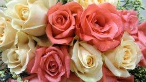 Ramo de las rosas Fotos de archivo libres de regalías