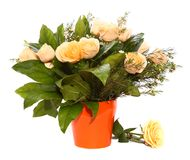 Ramo de las rosas blancas en una maceta de cerámica anaranjada Fotos de archivo libres de regalías