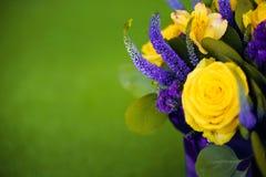 Ramo de las rosas de cierre del regalo de la flor para arriba, viola del amarillo de la tarjeta de felicitación Fotografía de archivo
