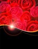 Ramo de las rosas rojas Fotografía de archivo libre de regalías