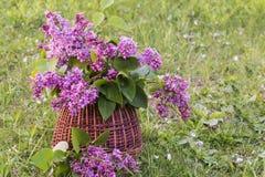 Ramo de lila Imagen de archivo libre de regalías