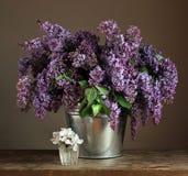 Ramo de lila en un cubo Imagen de archivo