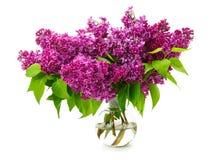 Ramo de lila en un florero de cristal Imagen de archivo