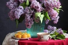 Ramo de lila y de albaricoques del jardín Imagenes de archivo
