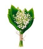 Ramo de lirios fragantes blancos del bosque de las flores con las hojas del verde aisladas en blanco imagen de archivo