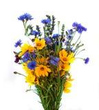Ramo de los oídos y de las flores del campo aislados en el fondo blanco Fotos de archivo