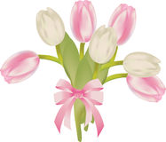 Ramo de los tulipanes Imagen de archivo