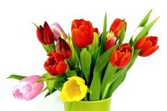 Ramo de los tulipanes Fotos de archivo