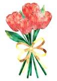Ramo de los tulipanes del Grunge libre illustration