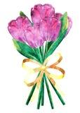 Ramo de los tulipanes del Grunge ilustración del vector