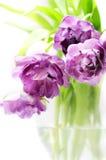 Ramo de los tulipanes en florero Imágenes de archivo libres de regalías