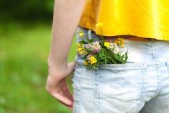 Ramo de margarita en bolsillo de la mezclilla fotografía de archivo libre de regalías