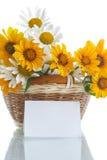 Ramo de margaritas amarillas y blancas Imagen de archivo libre de regalías