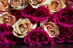 Ramo de melocotón y de rosas rosadas Imágenes de archivo libres de regalías