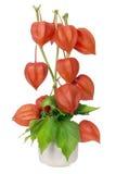 Ramo de Minimalistic - corazones rojos de la tarjeta del día de San Valentín Fotos de archivo