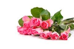 Ramo de muchas rosas rosadas Fotografía de archivo