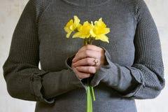 Ramo de Narcissuses amarillo en manos femeninas imágenes de archivo libres de regalías