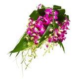 Ramo de orquídeas Imagen de archivo