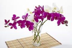 Ramo de orquídeas fotografía de archivo