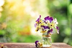 Ramo de pensamientos coloridos en fondo verde de la naturaleza Flores hermosas y delicadas foto de archivo libre de regalías