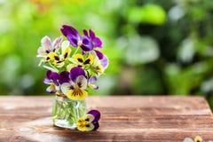 Ramo de pensamientos coloridos en fondo verde de la naturaleza Flores hermosas y delicadas imagen de archivo libre de regalías