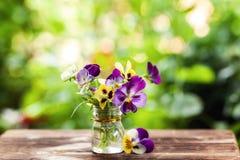 Ramo de pensamientos coloridos en fondo verde de la naturaleza Flores hermosas y delicadas foto de archivo
