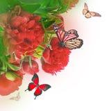 Ramo de peonies rosados Imágenes de archivo libres de regalías