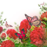 Ramo de peonies rosados Imagen de archivo