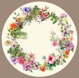 Ramo de pintura multicolora de la acuarela de las flores en círculo Fotografía de archivo