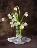 Ramo de primeras flores de la primavera hermosa Imagenes de archivo