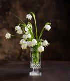 Ramo de primeras flores de la primavera hermosa Imagen de archivo libre de regalías