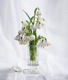Ramo de primeras flores de la primavera hermosa Imágenes de archivo libres de regalías