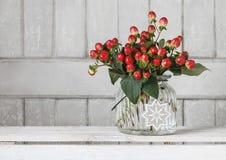 Ramo de ramitas de las plantas del hypericum con las bayas rojas imágenes de archivo libres de regalías