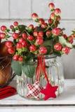 Ramo de ramitas de las plantas del hypericum con las bayas rojas fotografía de archivo