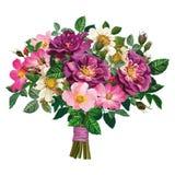 Ramo de rosa salvaje y de rosas violetas Foto de archivo libre de regalías
