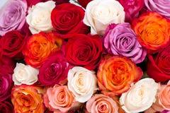 Ramo de rosas Imagen de archivo libre de regalías