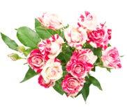 Ramo de rosas. Imagenes de archivo