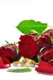 Ramo de rosas Foto de archivo libre de regalías