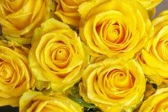 Ramo de rosas amarillas frescas Imágenes de archivo libres de regalías