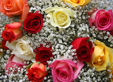 Ramo de rosas coloridas Foto de archivo