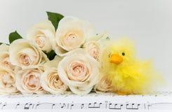 Ramo de rosas con el pollo de Pascua Fotos de archivo libres de regalías