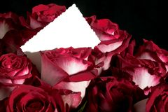 Ramo de rosas con la tarjeta de felicitación imagen de archivo libre de regalías