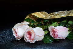 Ramo de rosas en descensos del agua Fotos de archivo libres de regalías