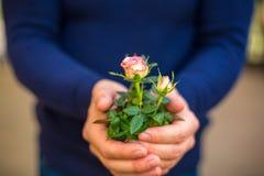 Ramo de rosas en las manos de un primer del hombre foto de archivo libre de regalías