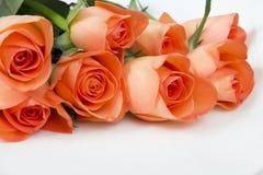 Ramo de rosas en un backgroud blanco Foto de archivo