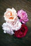 Ramo de rosas en un fondo de madera Imagen de archivo libre de regalías