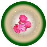 Ramo de rosas en un fondo que brilla intensamente circular Imagenes de archivo