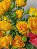 Ramo de rosas de las flores y de dos tulipanes en uno imagenes de archivo