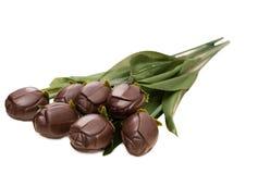 Ramo de rosas oscuras del chocolate, aislado en blanco Foto de archivo